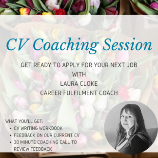 CV Coaching Session