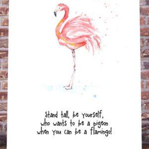 Flamingo Pigeon art print
