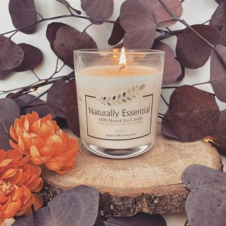 Naturally Essential Winter Candles – Large