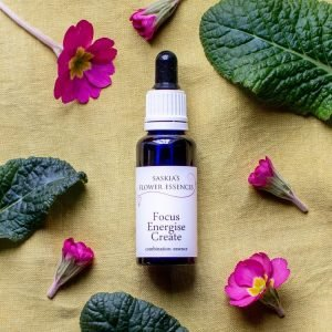 Focus, Energise, Create Flower Essence