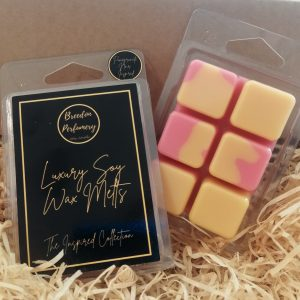 The Inspired Collection Soy Wax Melts Clamshell Pack